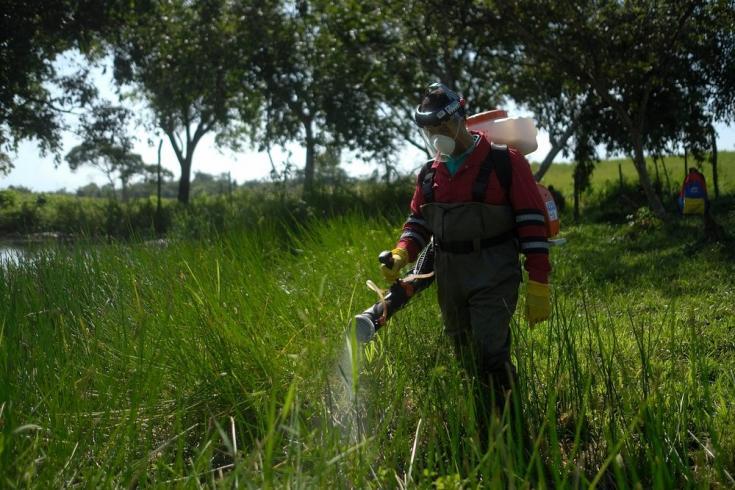 Junto con los equipos locales de Salud Ambiental realizamos aplicaciones de biolarvicida en el estado Sucre, para controlar las larvas de los mosquitos transmisores de malaria. Venezuela, agosto de 2021