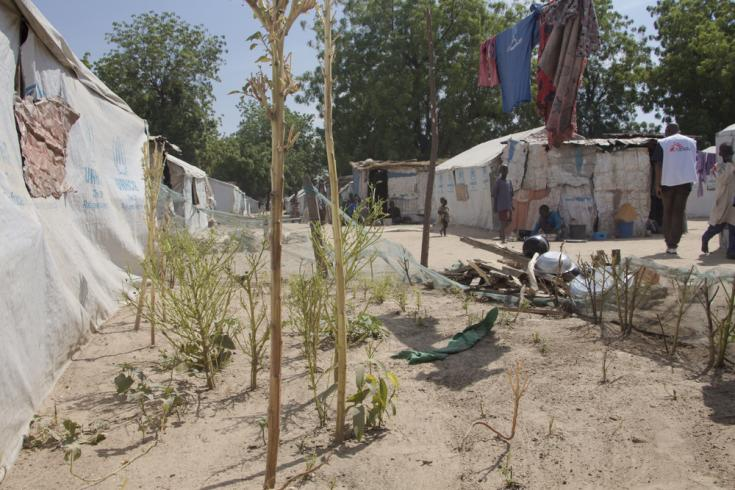 Campo de desplazados en Nigeria