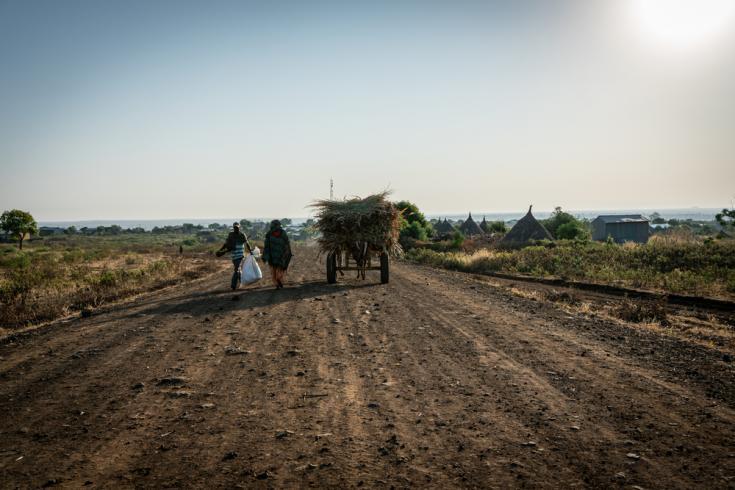 Las vastas tierras agrícolas del norte de Amhara, Etiopía.