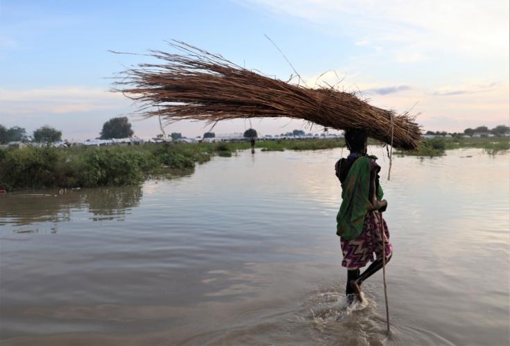 Una mujer lleva ramas de árboles para construir una nueva casa en la ciudad de Pibor, en el área administrativa del Gran Pibor, Sudán del Sur.