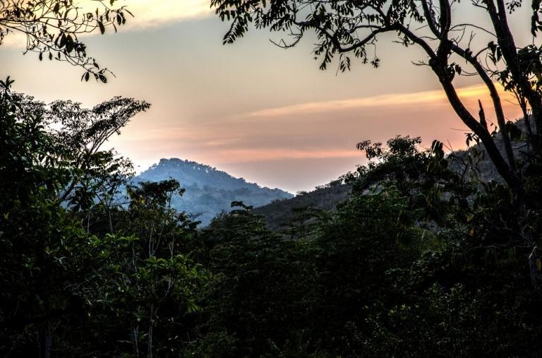 Guerrero es lugar de producción agrícola y exportación de alimentos. Pero también de capital humano, debido a la ausencia de oportunidades laborales.