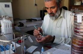 Causas y consecuencias de la resistencia a los antibióticos