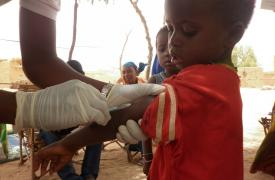 Vacunación. Níger