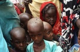En el campo para personas internamente desplazadas (IDP) en el Estado de Borno, en Nigeria, el 19% de los niños relevados por MSF sufría de desnutrición severa.