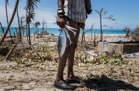 Un niño lleva pescado en una de las áreas más destruídas por el huracán Mathew, al suroeste de Haití ©Andrew McConnell/Panos Pictures