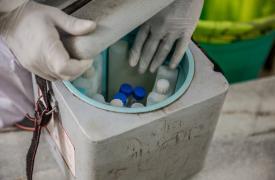 Foto ilustrativa tomada en Mumbai, mientras el Dr. Sharanya Ramakrishna revisa un contenedor en el área de recolección de muestras del centro de salud designado para COVID-19 en el hospital Pandit Madan Mohan Malviya Shatabdi. India, agosto de 2020.